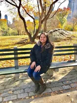 NY Blog 2