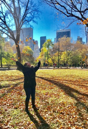 NY blog 4