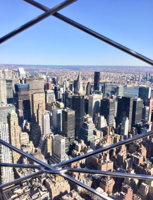 NY blog 6